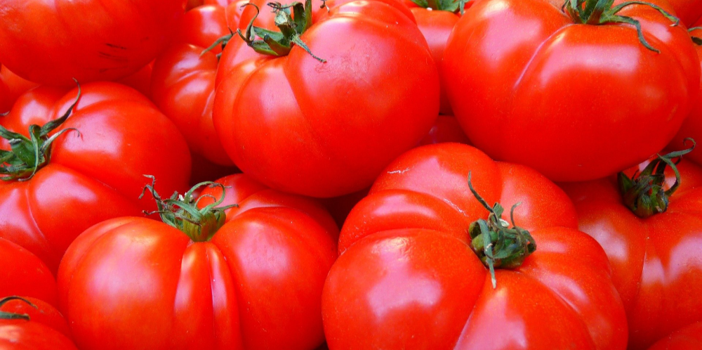 Pomodoro zin in werk